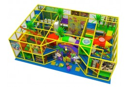 Home Indoor Playground