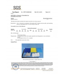 SGS Material test Report 02